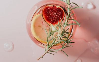 Kulinarische Gin-Reise